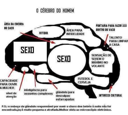 cerebro-do-homem