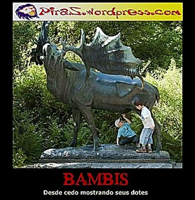 piras-bambis-3