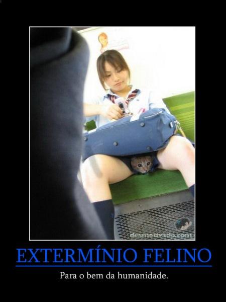 exterminiofelino