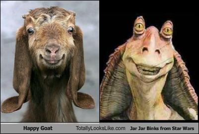 happy-goat-totally-looks-like-jar-jar-binks