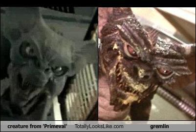 creature-from-primeval-totally-looks-like-gremlin