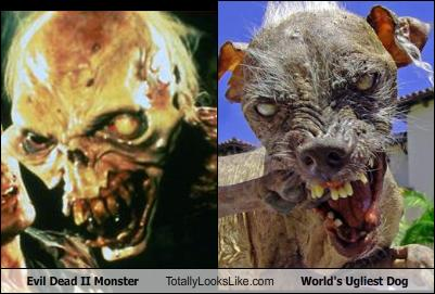 evil-dead-ii-monster-totally-looks-like-worlds-ugliest-dog