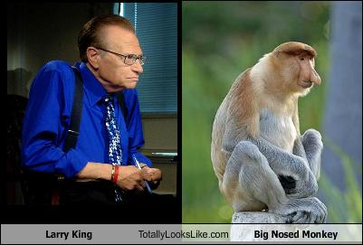 larry-king-totally-looks-like-big-nosed-monkey