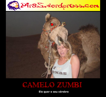 piras placas motivacionais camelo zumbi